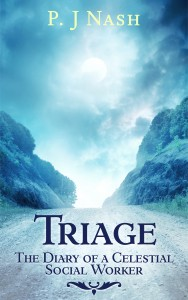 Triage: The Diary of a Celestial Social Worker